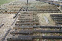 14th July 2019 (themostinept) Tags: e14 isleofdogs burrellswharf wood launchpad ground earth towerhamlets london
