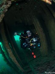 Vesper (penelope64) Tags: plongéesousmarine plongée dive bretagne brittany finistère ouessant mer merdiroise olympusem5 sousmarin fisheye panasonic8mmfisheye
