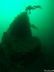 relief (penelope64) Tags: plongéesousmarine plongée dive bretagne brittany finistère ouessant mer merdiroise olympusem5 sousmarin fisheye panasonic8mmfisheye