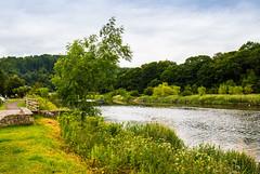 The Tranquil River Wye (Geordie_Snapper) Tags: canon5d4 canon2470mm forestofdean june landscape riverwye summer tintern tinternabbey