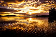 Letní podvečer na Bašce (Radebe27) Tags: voda krajina landscape zapadslunce sunset morava czechrepublic ceskarepublika leto slunce summer