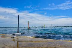 Sailing Class. (dunescape) Tags: toronto torontoharbour harbourfront torontoisland