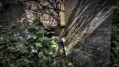 Casemate XIII entrance (pe0s, Steven) Tags: apocalypse apocalyptic stalker war hrd bunker bunkers ww2 abandoned urbex fort fortress hidden casemate cannon kornwerderzand trench fisheye afsluitdijk 1933 kazematten