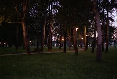 Darkness & nighttime (elkarrde) Tags: film analogue analogphotography c41 filmphotography filmisnotdead colornegativefilm plustek analoguephotography filmisalive scanner:brand=plustek scanner:model=opticfilm8100 plustekopticfilm8100 opticfilm8100 vuescanx6492 park trees sunset june 50mm spring nikon darkness dusk croatia zagreb f80 nikkor nightfall nikonf80 2019 5018 afd bundek nikonafnikkor50mm118d niftyfifty agfaphoto afnikkor nikkorafd50mmf18 vistaplus vistaplus200 agfaphotovistaplus200 camera:format=135 lens:format=135 june2019 spring2019 film:format=135 camera:brand=nikon lens:focallength=50mm lens:brand=nikkor film:process=c41 lens:brand=nikon film:basesensitivity=200asa camera:mount=f lens:mount=f lens:maxaperture=18 film:name=agfaphotovistaplus200 film:brand=agfaphoto lens:model=afnikkor50mm118d film:model=vista200 lens:model=afnikkor50mmf18