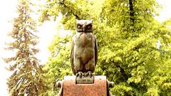 gwb | eule (stoha) Tags: eule nachtigall vogel tier animal bird owl skulptur guesswhereberlin berlin berlino germany deutschland duitsland europa gwb uhl uhu pauldehnicke dehnicke friedhöfevordemhalleschentor friedhof paul jerusalemerkirchhof neuerkirchhof jerusalemerundneuerkirchhofiii kreuzberg berlinkreuzberg kreuzberg61