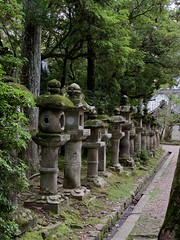 Nara (M_Strasser) Tags: nara japan