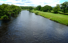 DSCF3691_4261 (Adam Swaine) Tags: river rivers cumbria aonb england english englishrivers britain british waterways counties countryside uk ukcounties county 2019 rural swaine trees riverbank summer northeast