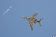 Dassault Falcon 10 MER marine (Luc_slf) Tags: armée arméefrançaise frencharmy marinenationale falcon falcon10mer dassault dassaultfalcon airport bve briveairport aeroportbrive aeroportbrivevalléedeladordogne spotting planespotting