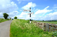 DSCF3681_4252 (Adam Swaine) Tags: broads broadsuk signs signposts rural cumbria aonb hedges hedgerows stonewall england english englishlandscapes britain british uk ukcounties beautiful flora roads counties countryside 2019 adamswaine