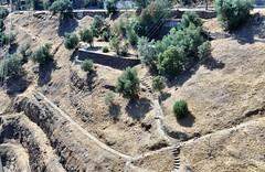 610_1707_4096 (a.marquespics) Tags: talude slope encosta barragem pracanadam pracana portugal nikon d610 afd 28105mmf3545d sun sol claro careca bright terra ground
