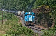 L&C 14 at Williams Estate DR (Travis Mackey Photography) Tags: lc 14 springmaid line lancaster sc gp383 train railroad locomotive trees grass power poles