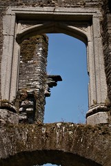 Berry Pomerory Castle (Janey113) Tags: castle devon berrypomeroy buildings