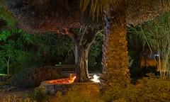 _IMG0247 (Deborah Kotovsky) Tags: night light manualfocus pentaxk70 shottoday