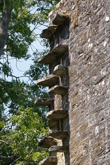 Berry Pomeroy Extension stones (Janey113) Tags: castle devon berrypomeroy buildings