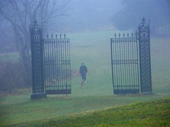 Misty Gate to Nowhere (Stanley Zimny (Thank You for 42 Million views)) Tags: gate mist for rain man people ringwood park moody atmosphere dog animal