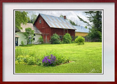Art-IMG_2315 (Posiej) Tags: vermont red barn grass green country summer flowers shrubs eastburke
