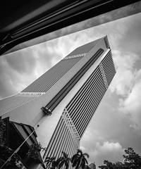 en passant par KL (Jack_from_Paris) Tags: p1000476bw panasonic dmcgx8 monochrome mono bw noiretblanc raw mode dng lightroom rangefinder télémétrique capture nx2 lr wide angle malaysia malaisie kl kuala lampur tourisme voyage travel tour skyscraper lignes lines paysage urbain