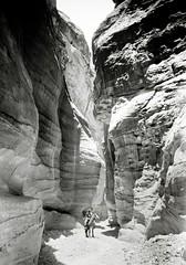 The Sik at Petra, Trans-Jordan ( 1898 )