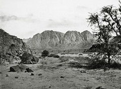 The Written Valley, Sinai ( 1857 ) - Francis Firth (Silverbanks Pictures Ltd.) Tags: grand tour middle east sinai written valley francis firth albumen 1850s