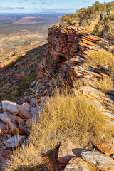Mt Sonder walk - spinifex and drop-off (NettyA) Tags: australia centralaustralia larapintatrail mtsonder mtsonderwalk nt northernterritory tjoritjiawestmacdonnellnationalpark worldexpeditions bushwalk bushwalking hike spinifex triodia cliff rocky