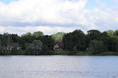 IMG_2628 (intimaralem85) Tags: saintpaul minnesota comolake lake wild wilderness birds plants flowers summer