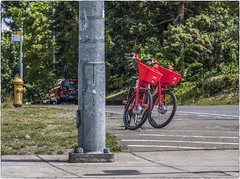 Two Red Bikes (NoJuan) Tags: 75mm olympus75mmf18 gx85 panasonicgx85 microfourthirds micro43 mirrorless m43 mft bicycle bikes redbicycle seattlewa driveby