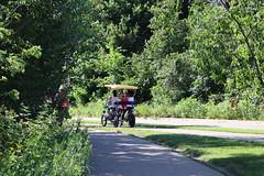 IMG_2663 (intimaralem85) Tags: saintpaul minnesota comolake lake wild wilderness birds plants flowers summer