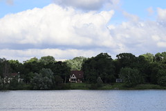IMG_2629 (intimaralem85) Tags: saintpaul minnesota comolake lake wild wilderness birds plants flowers summer