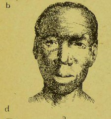 This image is taken from Page 317 of Physiognomy and expression [electronic resource] (Medical Heritage Library, Inc.) Tags: physiognomy facial expression emotions kingscollegelondon ukmhl medicalheritagelibrary europeanlibraries date1914 idb21296704