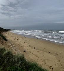 Coastal Erosion (The Pocket Rocket) Tags: coastalerosion oceangrovemainbeach oceangrove bassstrait victoria australia