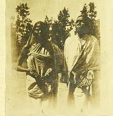 This image is taken from Page 49 of Report on experiments with Nastin B in Leprosy [electronic resource] (Medical Heritage Library, Inc.) Tags: leprosy disease public health kingscollegelondon ukmhl medicalheritagelibrary europeanlibraries date1911 idb21297472