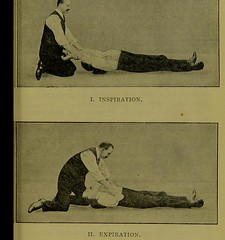 This image is taken from Page 681 of The homoeopathic vade mecum of modern medicine and surgery [electronic resource] (Medical Heritage Library, Inc.) Tags: poisons homeopathy kingscollegelondon ukmhl medicalheritagelibrary europeanlibraries date1914 idb21297460