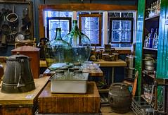 Antique Shop Treasures 198 of 365 (Year 6) (bleedenm) Tags: lateafternoon portland japanese garden2019 workshopflowersmayoregonphotographers breakthrough plants