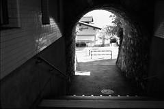 Stairway (vladixp) Tags: fp4 fp4plus fp480 d76 14min 20c 12 praktica mtl5 flektogon k2 pf7250u 3600dpi 35mm yellowfilter filmscan 35mmfilm film bw bwfilm filmphotography negative scanned svizzera schweiz switzerland suisse spiez