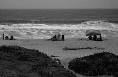 Summer (bingley0522) Tags: nikkormatftn micronikkor55mmf35 yellowfilter trix hc110h epsonv500scanner sanmateocounty beach halfmoonbay summer pacificocean autaut
