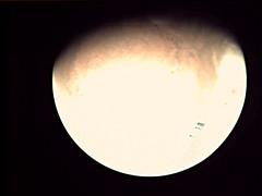 19-198_00.03.52_VMC_Img_No_9.png (ESA - Mars Express) Tags: mars marsexpress esa vmc marswebcam