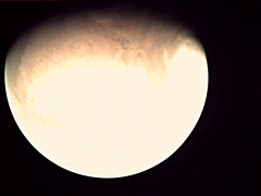 19-198_00.23.04_VMC_Img_No_33.png (ESA - Mars Express) Tags: mars marsexpress esa vmc marswebcam