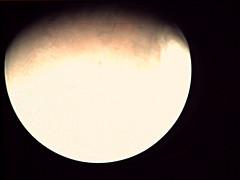 19-198_14.21.05_VMC_Img_No_33.png (ESA - Mars Express) Tags: mars marsexpress esa vmc marswebcam