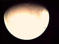 19-198_00.18.16_VMC_Img_No_27.png (ESA - Mars Express) Tags: mars marsexpress esa vmc marswebcam