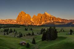 Alpenglühen auf der Seiseralm (jürgenmilnik) Tags: italien italia dolomiten dolomiti seiseralm geislerspitzen landscape landschaft nikon nikond7200