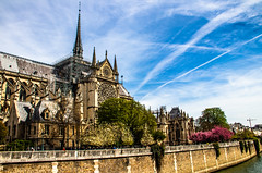 Notre Dame de Paris (Out Of The Map) Tags: paris france francia europe europa notrededamedeparis fire feux cathedral seine citybreak architecture arquitectura building historical classic church iglesia eglise outofthemap