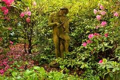 Edinburgh / Palace of Holyroodhouse / Royal private garden / The violinist - 2 (Pantchoa) Tags: édimbourg ecosse europe jardin royal palais holyroodhouse fleurs arbres nature statue jardinprivéroyal violoniste musique violon archer
