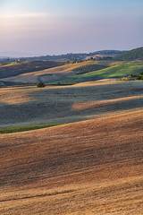 Rolling hills - Val D'Orcia (Mattia Ferraboli) Tags: sony sony7rii sonyalpha7rii sonyilce7rm2 sonyalpha 7rmii 7rm2 7rii ilce7rm2 ilce canon702004 canon702004l canon70200f4l canon70200mmf4l canon70200mmf40l canonef70200mmf4lusm canonef70200mmf4l 70200 70200mm canon f4 ef usm canonl 70200l italy tuscany toscana landscape photography landscapephotography hill hills tripod manualfocus availablelight naturallight gold golden goldenhour sun sunny sunset sky cloud cloudy clouds grass green yellow orange purple house home holiday 2019 july summer mountain mountains tree trees telephoto telephotolens nature dusk field shadow shadows highlights pienza valdorcia sanquirico sanquiricodorcia