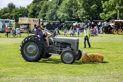 Kent_County_Show_2019_703_3538