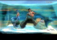 Tanked (~Deluza Delhom~) Tags: tanked merfolk mermaid merman secondlife sl avatar fantasy photography deluza holmsie maitreya gianni catwa