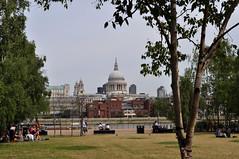 St Pauls from Tate Modern (Guy Tyler) Tags: london londonist southbank guytyler tate tatemodern stpaul stpauls stpaulscathedral thames riverthames