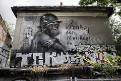 Monkey (Lens Daemmi) Tags: monkey graffiti street art herakut berlin
