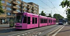 In Pink we trust... (Peter ( phonepics only) Eijkman) Tags: amsterdam city combino gvb tram transport trams tramtracks trolley rail rails strassenbahn streetcars nederland netherlands nederlandse noordholland holland