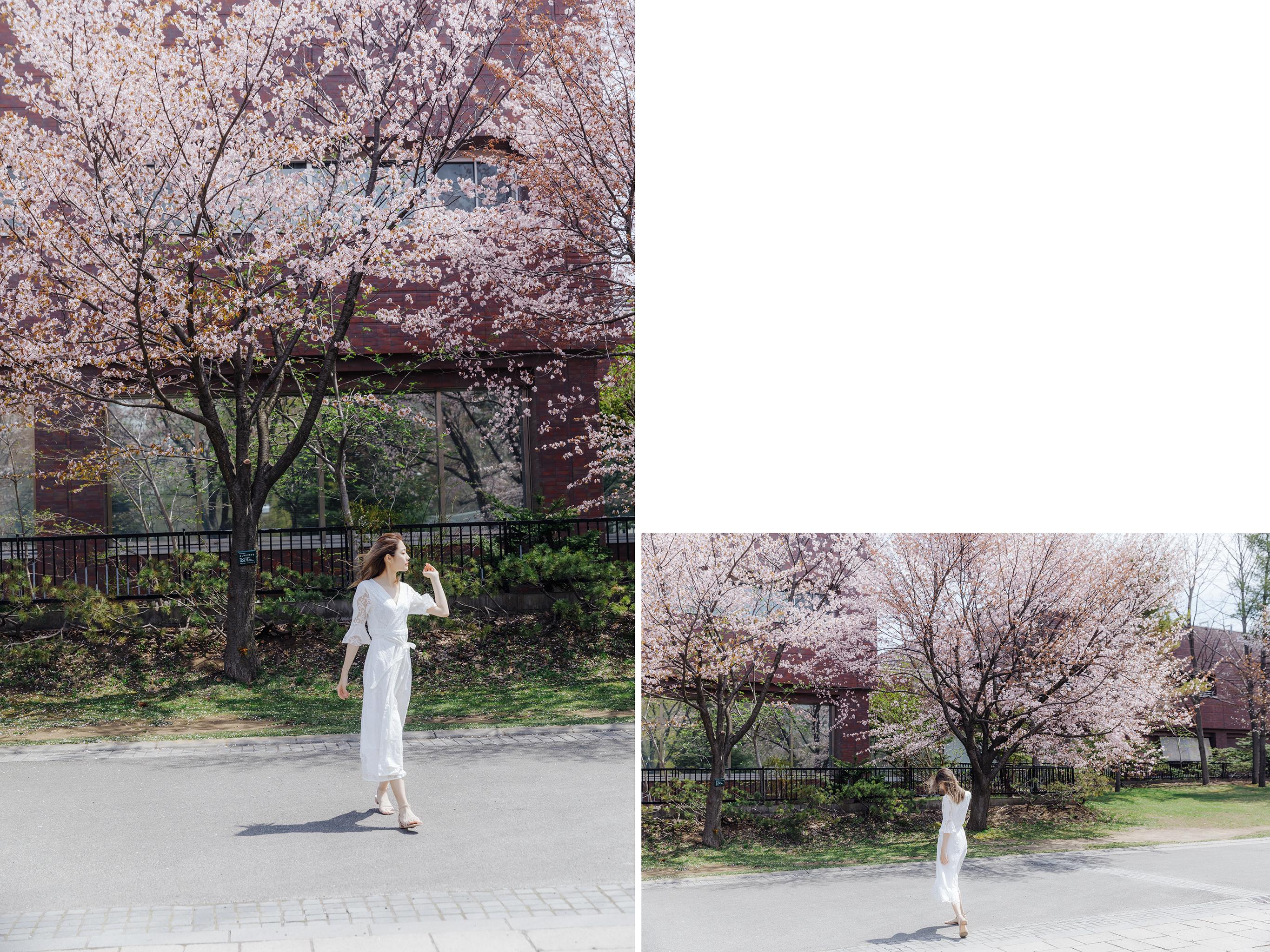 48313839387 0e7f6bf2c8 o - 【海外寫真】+2019櫻の時+