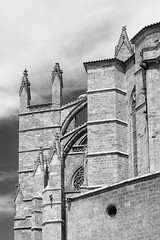 Palma Cathedral exterior with flying butresses (John Wilder Photography) Tags: architecture palmademallorca bw cathedral